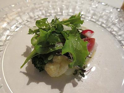 リストランテ モデスト (RISTORANTE MODESTO) アオリイカのカルパッチョサラダ仕立て